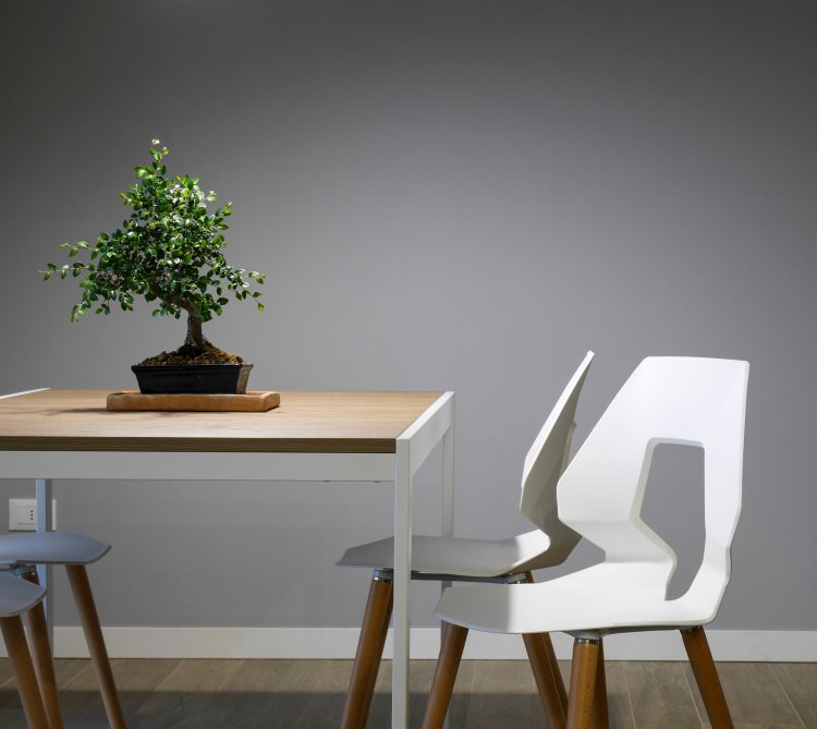 Modern wooden furniture